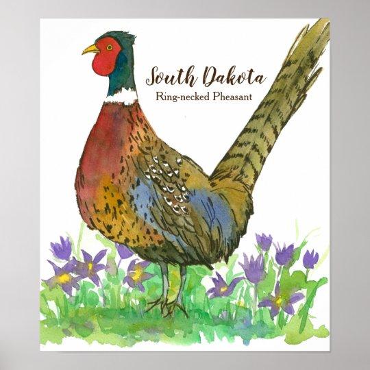 State Bird of South Dakota Ring-Necked Pheasant Poster