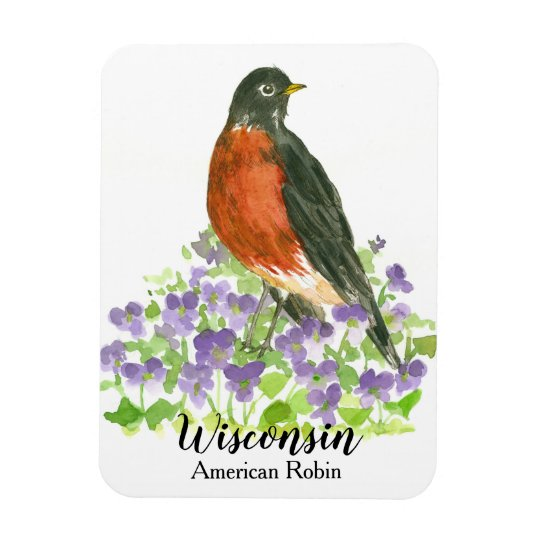 State Bird of Wisconsin American Robin Violets Magnet