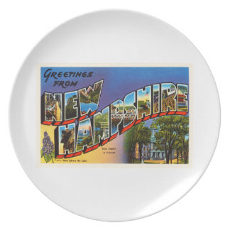 State of New Hampshire NH Vintage Travel Souvenir Dinner Plates