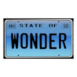 State of Wonder Poster