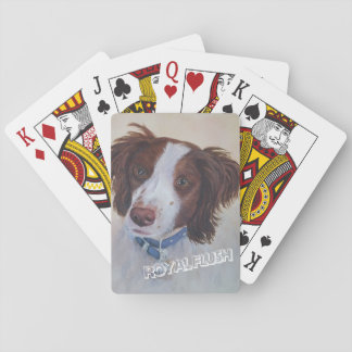 STATELY AUBURN SETTER MIX PLAYING CARDS