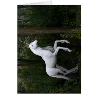 Stately White Unicorn Cards