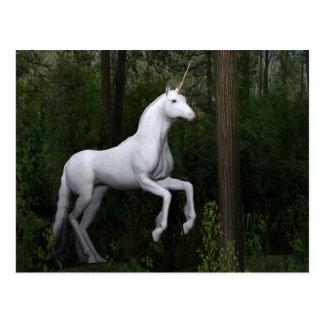 Stately White Unicorn Postcard