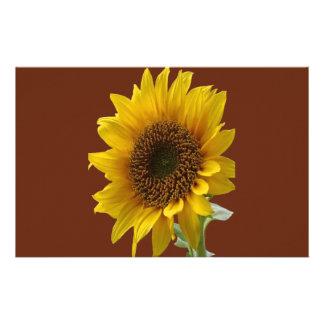 Stationary paper sunflower custom stationery