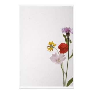 Stationery colorful flowers