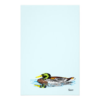 Stationery Duck in a Pond