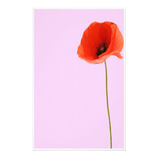 Stationery poppy