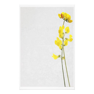 Stationery yellow more flower