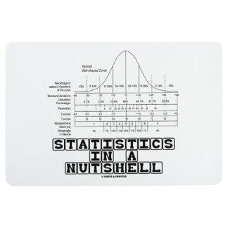 Statistics In A Nutshell Stats Cheat Sheet Floor Mat
