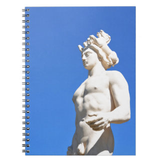 Statue of Apollo (Neptune) Spiral Note Book