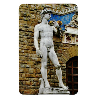 Statue of David Florence Italy Magnet