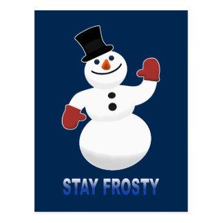 Stay Frosty Postcard