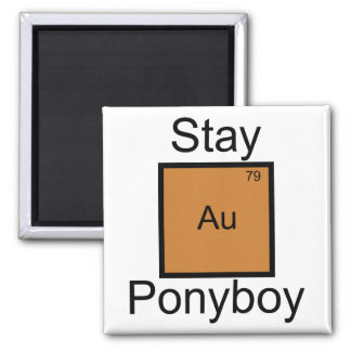 Stay Gold Ponyboy Element Pun Square Magnet