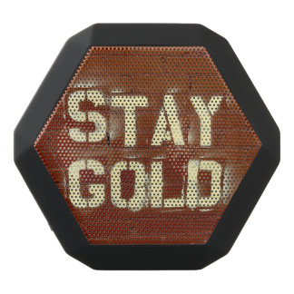 Stay Gold Speaker