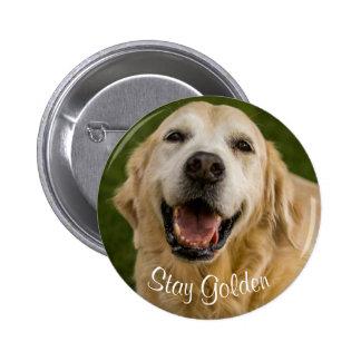 """""""Stay Golden"""" Golden Retriever Button"""