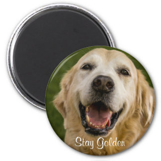"""Stay Golden"" Golden Retriever Magnet"