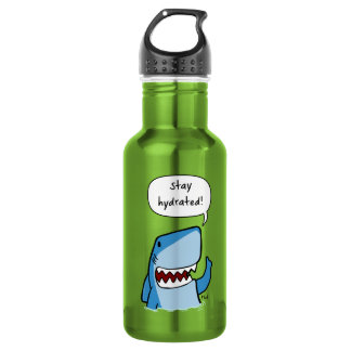 Stay hydrated 532 ml water bottle