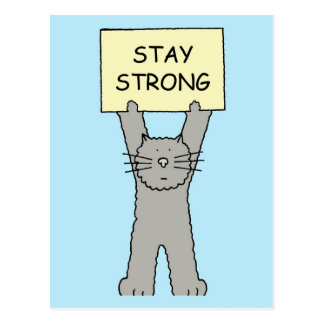 Stay Strong Encouragement Cat Postcard