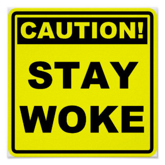 Stay Woke Meme Poster Sign Placard