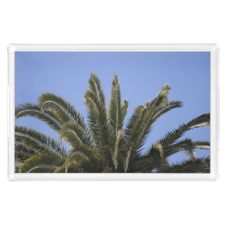 Staycation Palm Tree Sunny Blue Sky Photograph Acrylic Tray