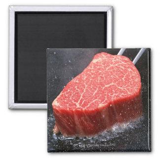 Steak Square Magnet