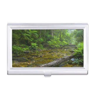 Steam In Forest, The Knysna-Amatole Montane Business Card Case