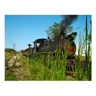 Steam Locomotive in high grass Postcard