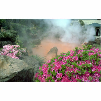 Steam pool in Bephu, Japan Acrylic Cut Out