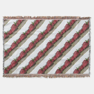 Steam train carriage accommodation, Arizona Throw Blanket