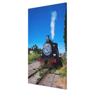 Steam Train On La Trochita Canvas Print