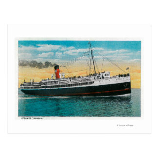 "Steamer ""Avalon"" at Santa Catalina Island Postcard"