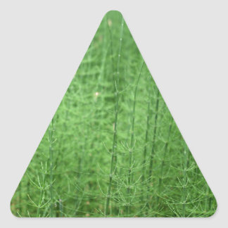 Steams of water horsetail triangle sticker