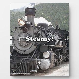 Steamy!: steam train engine, Colorado, USA 8 Plaque