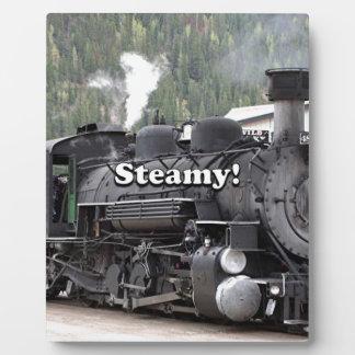 Steamy!: steam train engine, Colorado, USA Plaque