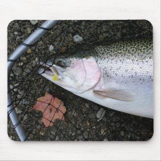 Steelhead Rainbow Trout Fly Fishing Mouse Pad