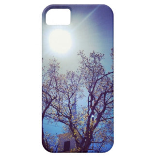 steeple sunset iPhone 5 cases