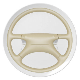 Steering wheel - front view plate