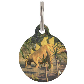 Stegosaurus dinosaur - 3D render Pet Name Tags