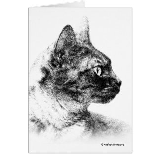 Stella the Grey Cat Card