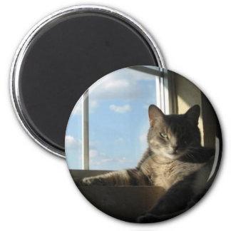 stella window magnet