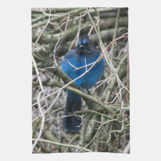 STELLAR JAY KITCHEN TOWEL