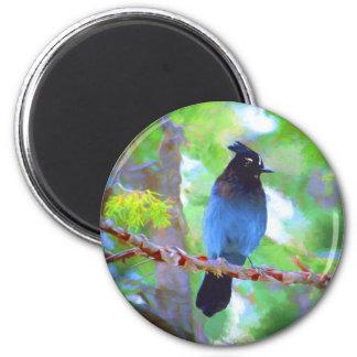 Steller's Jay 2 Inch Round Magnet