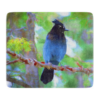 Steller's Jay Boards