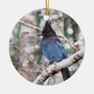 Steller's Jay Ceramic Ornament