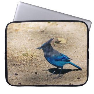 Steller's Jay laptop sleeve
