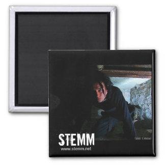 STEMM: Dan Magnet