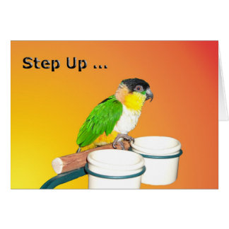 Step Up Birthday Card