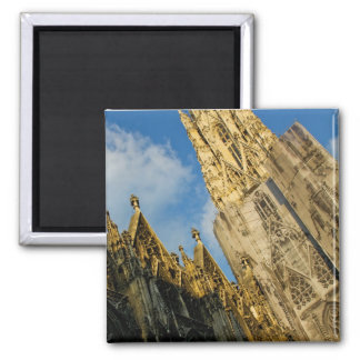 Stephansdom Square Magnet