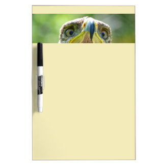 Steppe Eagle Head 001 2.1 Dry Erase Board