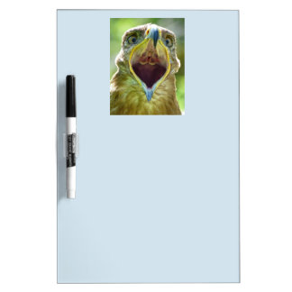 Steppe Eagle Head 001 2.2.2 Dry Erase Board